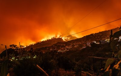 A Note on the Wildfires